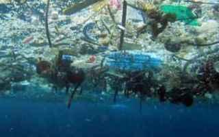 Ambiente: ambiente  mediterraneo  mare