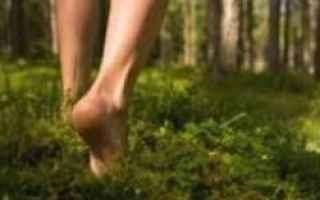 camminare  sogni  interpretazione