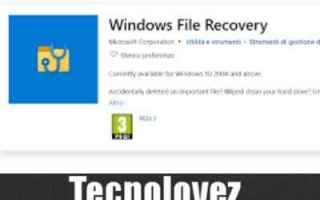 Computer: windows file recovery