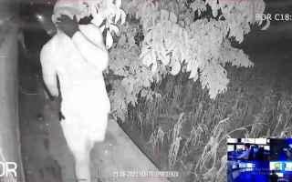 sicurezza video virali  ladri intrusioni