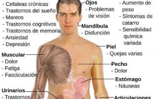 fibromialgia  malattie