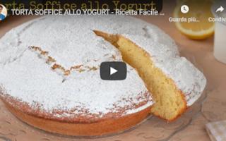 https://diggita.com/modules/auto_thumb/2021/01/02/1661151_torta-soffice-allo-yogurt-video-ricetta_thumb.png