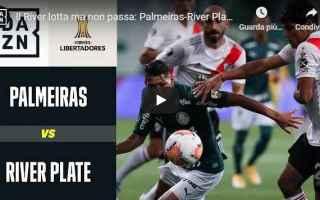 https://diggita.com/modules/auto_thumb/2021/01/13/1661466_palmeiras-river-plate-0-2-gol-e-highlights-copa-libertadores-video_thumb.jpg