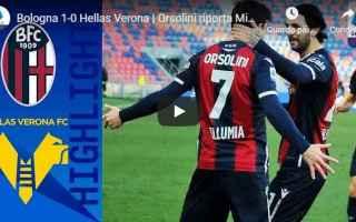 bologna verona video gol calcio