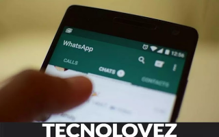 WhatsApp: copiare chat whatsapp  telegram