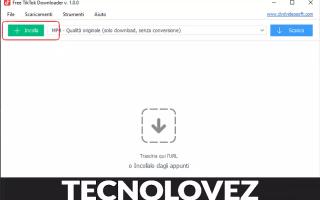 Software Video: free tiktok downloader tik tok downloade