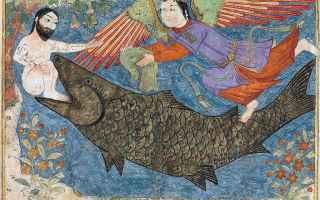 antico testamento  colomba  giona