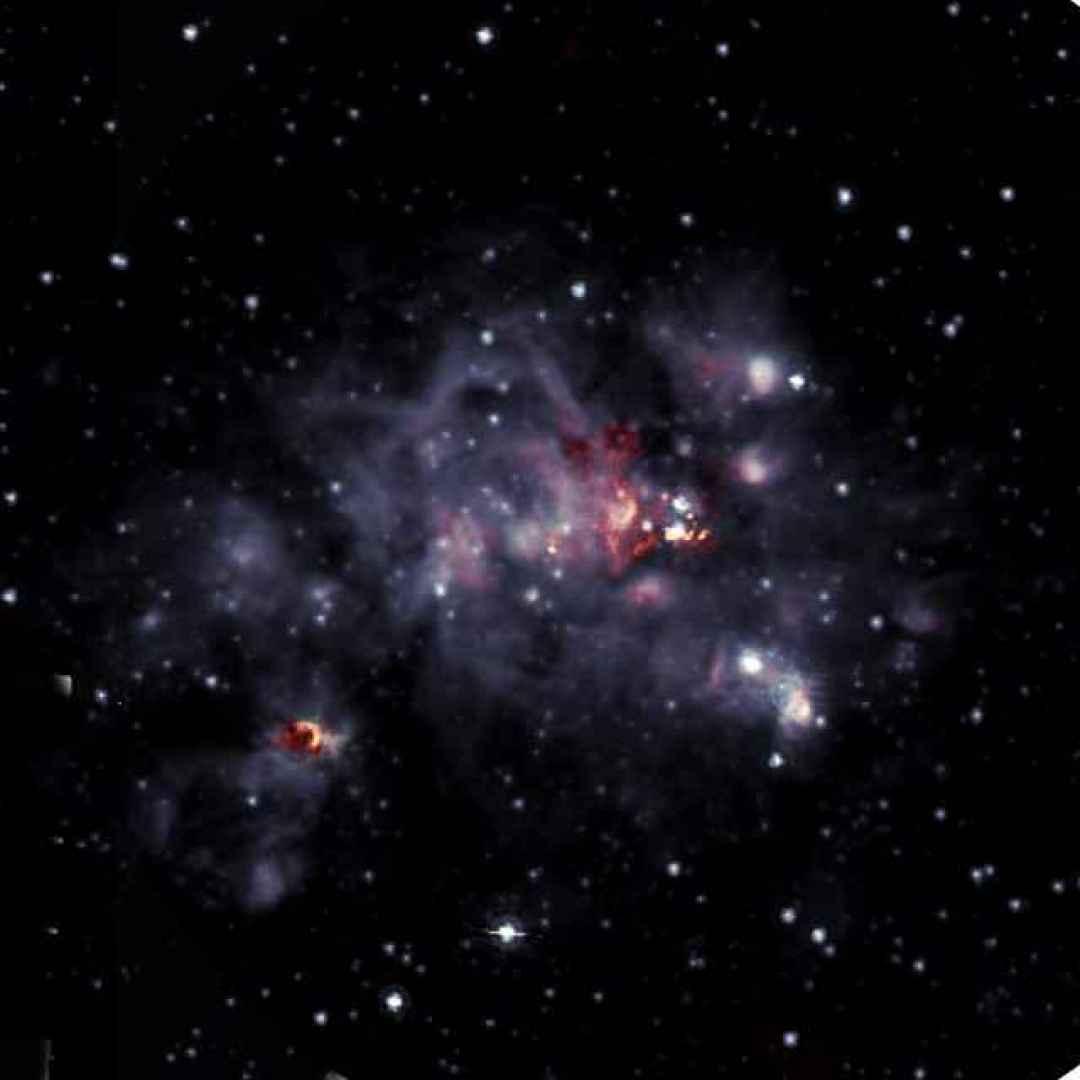 nube molecolare  stelle  vla