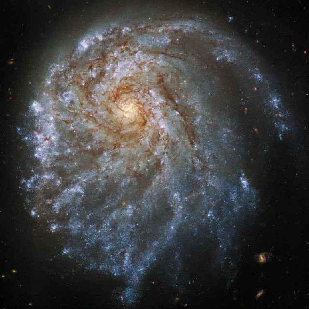 galassie  stelle  hubble