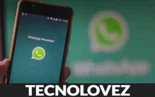 WhatsApp: whatsapp ci ripensa